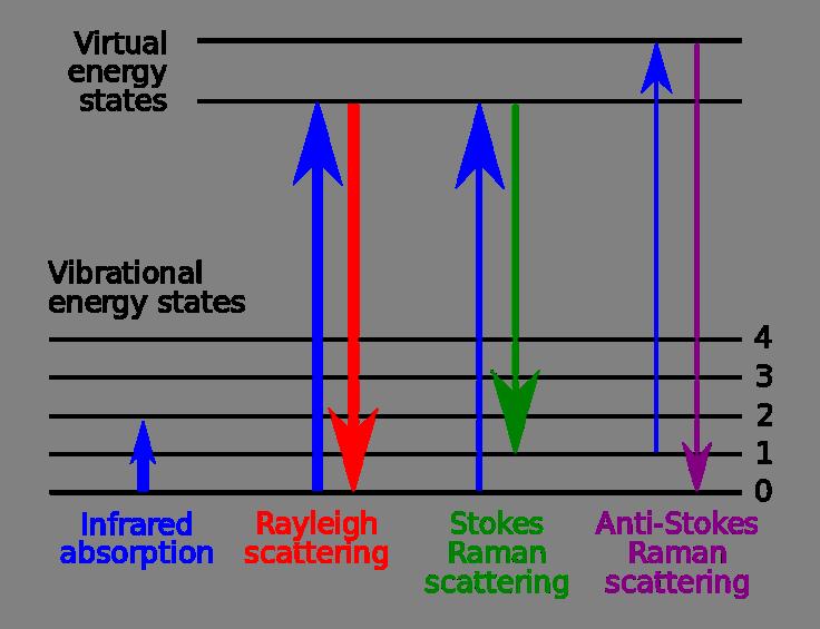 Nella spettroscopia Raman si utilizza tipicamente una luce laser nel campo visibile, nel vicino infrarosso o nel vicino ultravioletto. In questo modo è possibile eccitare i livelli energetici vibro-rotazionali delle molecole, osservando nel relativo spettro transizioni che sottostanno alla regola di selezione ?J=0, ±2 per vibro-rotori lineari e ?J=0, ±1, ±2 per vibro-rotori simmetrici. Devono essere soddisfatte le regole di Pauli: non tutte le rotazioni saranno permesse dal momento che i bosoni devono mantenere invariato il segno della loro funzione d'onda durante la rotazione e i fermioni devono cambiarla. Affinché si abbia l'eccitazione dei livelli vibrazionali la regola di selezione implica ??=±1.