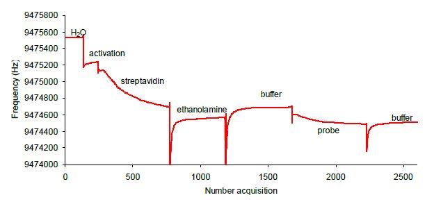 biopolimeri e macromolecole